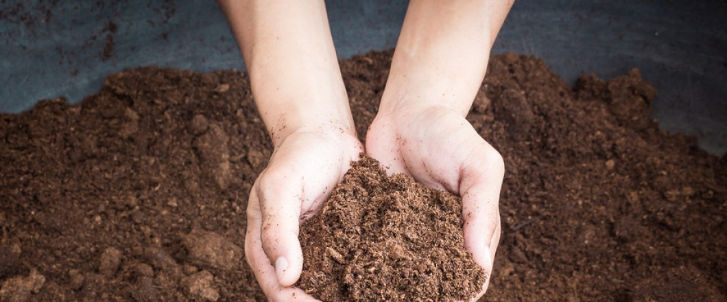 Composting Services - D's Recycling and Composting