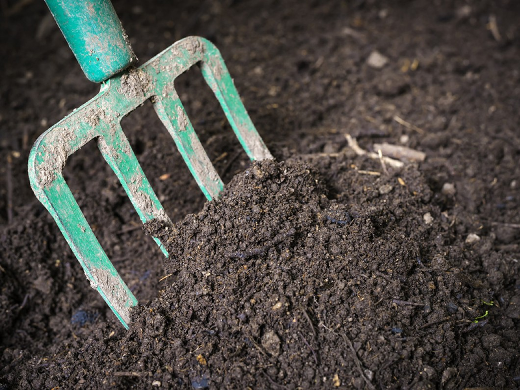 Top Grade Compost & Mulch - D's Recycling and Composting